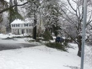 snowcarnage3